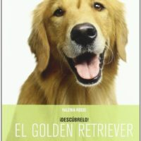 Libro, el golden retriever
